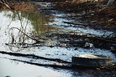 Effects Environmental from Water contaminated with Chemicals and oil Stock Photos
