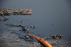 Effects Environmental from Water contaminated with Chemicals and oil - stock photo