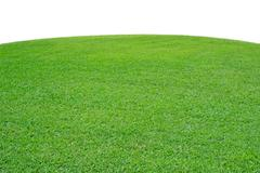 Curved green grass Stock Photos