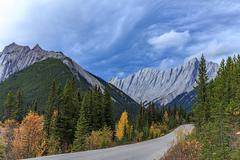 Icefields  Parkway, Alberta, CanadaJasper - stock photo
