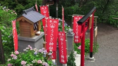 Japanese Shinto Shrine With Red Banners  4K Stock Footage