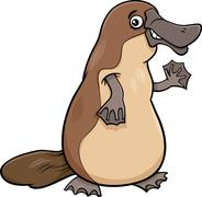 platypus animal cartoon illustartion - stock illustration