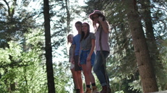 A Group Of Friends Smile On A Log, Young Man Puts His Arm Around Blonde Girl - stock footage