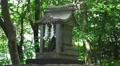 Small Shinto Stone Shrine In Green Forest 02 4K 4k or 4k+ Resolution