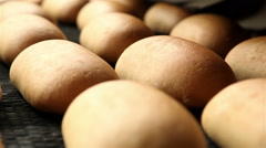 Factory for the production of bread 4 Stock Footage
