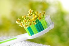 Toothbrush with tiny flowers Stock Photos