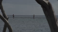 Stand Up Paddlers In Pacific Ocean Stock Footage