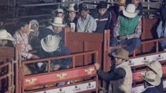 Bull Rider Stock Footage