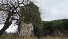 Old stone house and tree Stock Footage