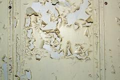 parched white paint on old door, interesting painted wood texture - stock photo
