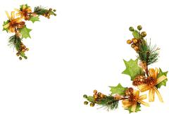 Christmas tree branch ornament Stock Photos