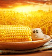 corncob over sunset - stock photo