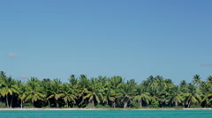 Tropical scene with huge palms and blue sea Stock Footage