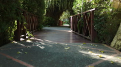 Crossing wooden bridge among the palm branches - stock footage