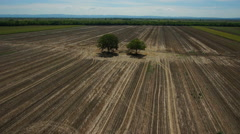 Prairie farmland aerial shot with two trees long shot Stock Footage