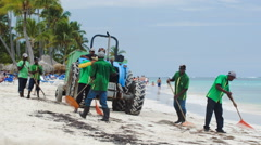 Workers cleaning beach from sea weed Stock Footage