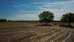Prairie farmland aerial shot with two trees low altitude fly bye slow motion Stock Footage