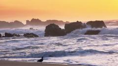Big Sur Beach Sunset Big Waves - 60fps Stock Footage