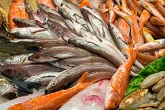 Different kinds of fish for sale - stock photo