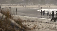 Long lense shot of people and dogs strolling on a beach Stock Footage