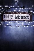 christmas home decoration - stock photo