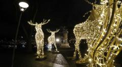 Elk fairy lights - Christmas in Stockholm Stock Footage