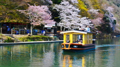 Katsura River in Spring in Kyoto, Japan Stock Footage