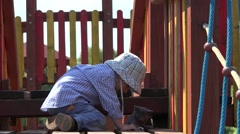 Stock Video Footage of Amusing little boy playing with little cat on playground