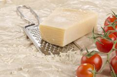 mozarella and grater on paper - stock photo