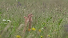 Couple hands joining together in blossom spring field  Stock Footage