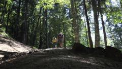 4K Father, Child Walking Mountain Trail Paths, Family Hiking Forest, Camping POV Stock Footage