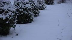 ULTRA HD 4K Timelapse adult woman remove snow sidewalk shovel cold winter season Stock Footage