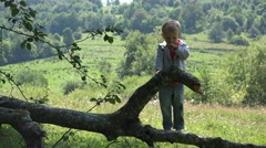 Stock Video Footage of Little child climbed up a branch tree ask mother help to take down 4k