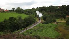 SIR NIGEL GRESLEY STEAM TRAIN, NORTH YORKSHIRE MOORS RAILWAY Stock Footage