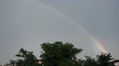 Rainbow over green tree 4k Stock Footage