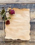 old paper with dried rose on wooden - stock photo