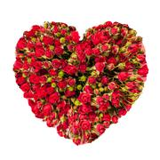Stock Photo of valentines day heart made of red roses isolated on white background