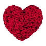 valentines day heart made of red roses isolated on white background - stock photo