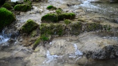 Flowing water of small creek inside green forest Stock Footage