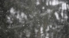 Falling snowflakes Stock Footage