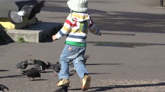 Little child running to catch pigeons. Bird feeding  Stock Footage