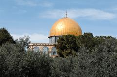 Dome of the Rock behind olive tress. - stock photo