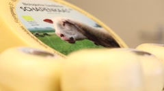 Hard sheep cheese from the farm in Holland Stock Footage