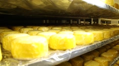 Maturing cheese pile up on stacks Stock Footage