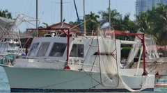 anchored fishing boats in miami 2 - stock footage
