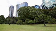 Office buildings and Japanese garden and park, Tokyo, Japan - stock footage