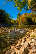 Autumn color along the saco river in conway, new hampshire. Kuvituskuvat