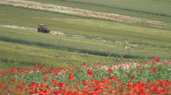 Agricultural activity, tractor plow a field. Fields of poppies and wildflowers.  Stock Footage