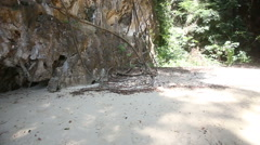 Beach among cliff trees with lianas Stock Footage