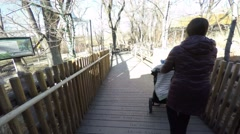 Woman pushing stroller through the zoo Stock Footage
